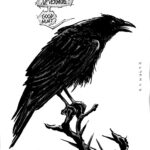 Matthew the crow (20,5 x 29,5) - usd 80