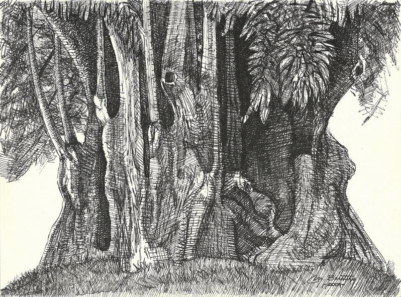 Tree - 21 x 29,7 cm - usd 130